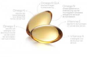 1503 Skinfitt Omega Pearls Werking op maat